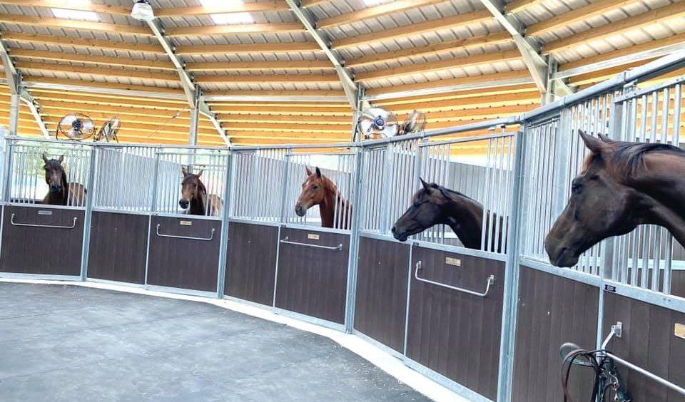 New Gem @Twinwood Equestrian, TX
