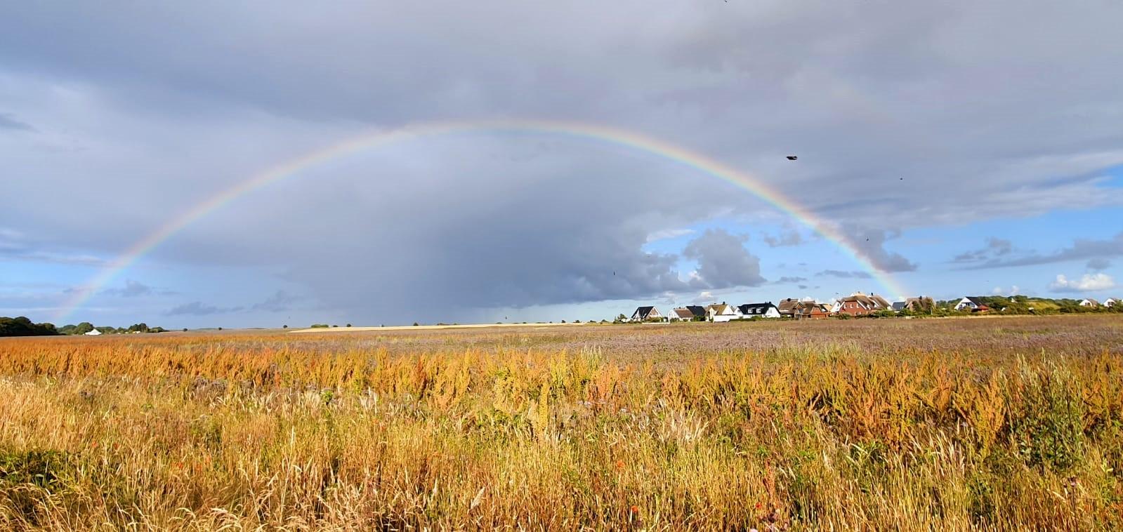 Regenbogen über dem Deich
